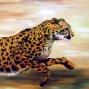 cheetah; 2001;18x24; acrylic